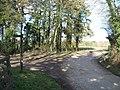 Salter's Lane junction - geograph.org.uk - 1727247.jpg