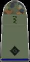 SanH 211-Leutnant-SanOA-(Veterinärmedizin).png
