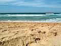 Sandy detail - panoramio.jpg