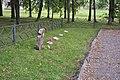 Sarkanās armijas brāļu kapi, WWII, Džūkste, Džūkstes pagasts, Tukuma novads, Latvia - panoramio (5).jpg