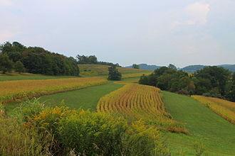 Penn Township, Lycoming County, Pennsylvania - Scenery of Penn Township, Lycoming County, Pennsylvania