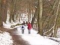 Schlachtensee - Winterlicher Uferweg (Wintry Lakeside Path) - geo.hlipp.de - 33184.jpg
