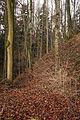 Schloßbuckel-5370.jpg