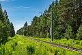Sciklieva reserve (Belarus, June 2020) 10.jpg