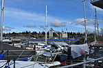 Seattle - Canal Marina 03.jpg