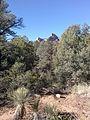 Secret Canyon Trail, Sedona, Arizona - panoramio (4).jpg
