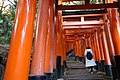 Sembon Torii Fushimi Inari Taisha 171206 (25260731198).jpg