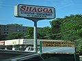 Shagga! (7411454330).jpg