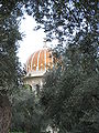 Shrine of the Báb IMG 1006.JPG