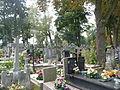 Siedlce Cmentarz Widok 2012 micbor.JPG
