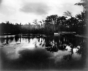 George Barker (photographer) - Image: Silver Springs, Florida, in moonlight, 1887 cph.3c 32843