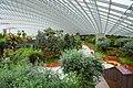 Singapore, Gardens by the bay - panoramio (9).jpg