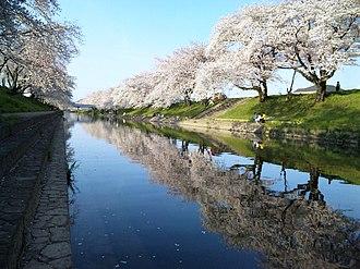 Kakamigahara, Gifu - The banks of the Shin-Sakai River in spring.