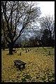 Skogskyrkogården - KMB - 16000300018381.jpg