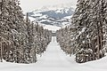 Snowmobiles riding the park road with the Tetons in the background (2) (3cd42a45-1dd4-4e25-a880-6892b79615ac).jpg