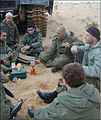Soldiers of the 130th Brigade.jpg