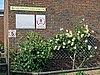Southgate Adelaide Cricket Club sign and rose bed at Walker Cricket Ground pavilion, Southgate, London, England.jpg