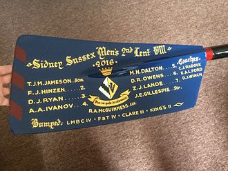 Sidney Sussex College Boat Club - Oar won by SSBC M2 in 2016 Lent Bumps