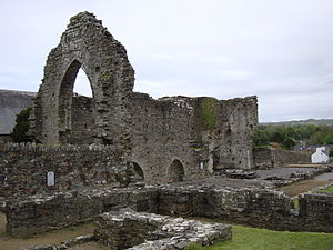 St Dogmaels Abbey - St Dogmael's Abbey