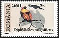 Stamp Rumania 2000 Diphyllodes magnificus.jpg