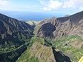 Starr-151005-0214-Aleurites moluccana-aerial view makai-West Maui-Maui (26009964720).jpg
