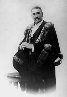 Alexander Mayes politician and builder