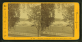 Steamboat Landing, from Senter House, Senter Harbor, N.H, by Pease, N. W. (Nathan W.), 1836-1918.png