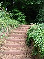 Steps up to Chapel Hill Pleasure Grounds, Torquay - geograph.org.uk - 862718.jpg