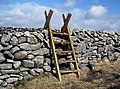 Stile over the Mourne Wall, Slievenaglogh - geograph.org.uk - 1205570.jpg