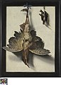 Stilleven met vogels, circa 1640 - circa 1689, Groeningemuseum, 0040104000.jpg