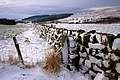 Stone Wall, Top of Raisdale - geograph.org.uk - 676955.jpg