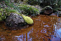 Stone on river.jpg