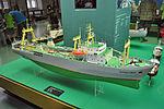 Stralsund, im Meeresmuseum (2013-07-29), by Klugschnacker in Wikipedia (4).JPG