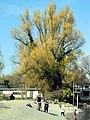 Strandbad Mythenquai 2012-03-28 14-57-40 (P7000).JPG