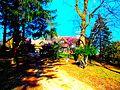 Summers Residence - panoramio.jpg