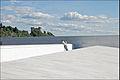 Sur le toit de marbre de lopéra dOslo (Norvège) (4825741151).jpg