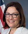 Suzan DelBene, official portrait, 115th Congress (cropped).jpg