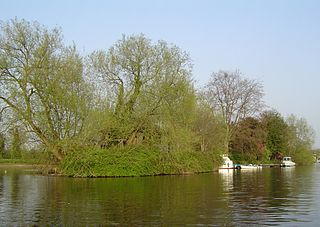 Thames Ditton Island village in the United Kingdom