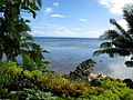 Taveuni coast.jpg