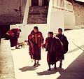 Tawang Monastery, Tawang, Arunachal Pradesh.jpeg