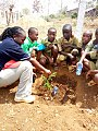 Teaching tree planting.jpg