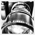 Testing the Leica 90mm f 2 (6887840099).jpg