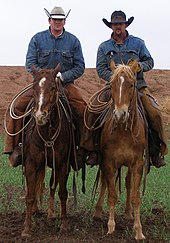 Modern working cowboys wearing cowboy hats. While providing less protection  from the sun f3b27f90c9a