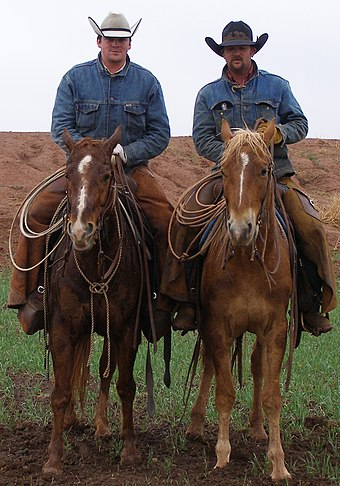 Modern working cowboys wearing cowboy hats. While providing less protection  from the sun ea2b5f9b741