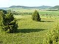 Thüringen, Wiesenthaler Schweiz, NSG 145, Blick auf Horn und Stoffelskuppe.jpg