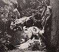 The Adventures of Tarzan (1921) - 12.jpg