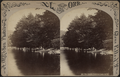 The Beach, Luzerne Lake, N.Y, from Robert N. Dennis collection of stereoscopic views.png