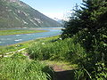 The Chilkoot River joining the Lyn channel.jpg