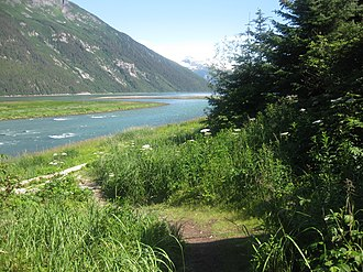 Chilkoot River - Chilkoot Lake merges with Lynn Canal