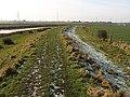 The River Hull Bank - geograph.org.uk - 1156324.jpg